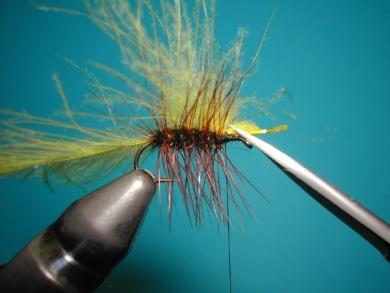 Fly tying - Palmer - Step 6