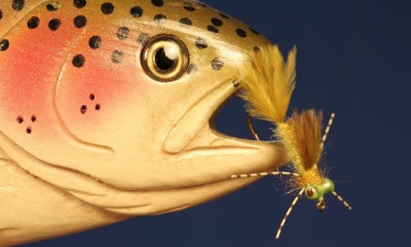 Los dragonflies y damselflies  junto con las efímeras son insectos muy antiguos, de hecho habitan la tierra hace mas de 300 millones de años cuando los dragonflies primitivos llegaron a tener una envergadura de mas de 70 centímetros. Mas grandes que un halcón y otras rapaces modernas. El tamaño es lo único que ha cambiado en estos insectos a lo largo de los eones ya que ahora si bien mantienen casi las mismas características morfológicas su tamaño es bastante menor que el de los parientes prehistóricos. Son insectos muy importantes para un pescador de mosca y no solo en las aguas lentas de lagos y lagunas, en muchos ríos la población de Odonatos -Odonata es el nombre científico y latino de este orden de insectos- es muy abundante. Se dividen en los subórdenes Zygoptera y Anisoptera, el primero corresponde a los que conocemos como Damselflies o Damsels en el leguaje mosquero. Los Damselflies son insectos delicados y esbeltos si los comparamos con los Dragonflies y al descansar en vez de mantener las alas abiertas las pliegan todas juntas y las mantienen todas juntas como si fueran una sola perpendiculares y a lo largo del cuerpo en la mayoría de los casos. Las larvas  o ninfas de los Damselfly son carnívoras, devoran gran cantidad de otros insectos incluso a los de su misma especie. Estos ágiles predadores se ocultan entre la vegetación perfectamente camuflados por el color que toman, y desde allí acechan a sus presas. Las mas comunes son ninfas mas pequeñas de mayflies y larvas de Quironómidos o Dípteros. Antes de eclosionar las ninfas de Damselfly tienen que llegar a aguas mas bajas para trepar por algún tallo, tronco o piedra saliendo a la superficie donde abriendo el exoesqueleto de ninfa  se convierten en insectos adultos. Las ninfas de Damselfly  nadan perfectamente con un movimiento ondulatorio lateral muy notable por eso en mis moscas trato de incorporar materiales suaves como el marabou, la filopluma y el ostrich que en el agua ondulan como el insecto verdad