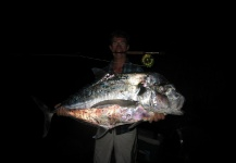 African Pompano - Threadfin trevally